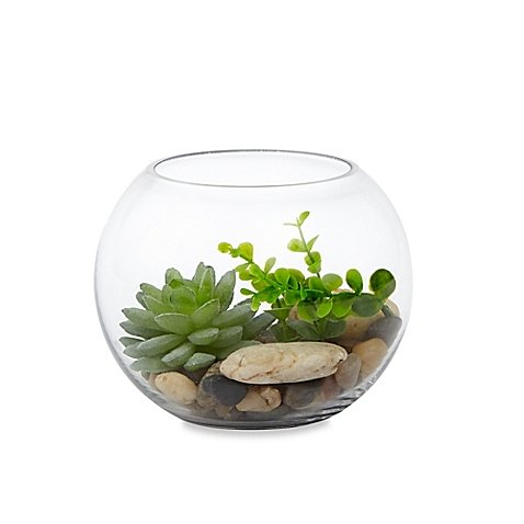 Habitat Small Round Bowl Terrarium with Faux Fill l Faux Succulents, Stones and Pebbles for a Realistic Addition to your Home (Airline Tickets To Florida compare prices)
