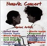: Nunavik Concert (Eskimo, Inuit Music)