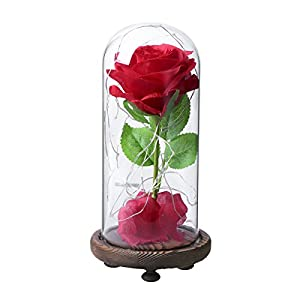 LEDMOMO Red Silk Rose and Led Light with Fallen Petals in a Glass Dome on A Wooden Base Artificial Rose Flowers USB Night Light Gift for Valentine's Day Anniversary Wedding Birthday 2