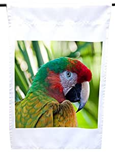 Rikki Knight Colorful Macaw on Green House or Garden Flag, 12 x 18-Inch Flag Size with 11 x 11-Inch Image