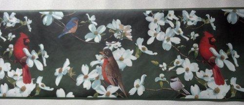 Bird Border (Birds Wallpaper Border – Cardinal, Bluebird – Green Background…)