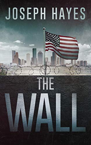 The Wall by [Hayes, Joseph]