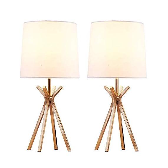 CASILVON Table Lamp YTL009G-2N (Rose) -  - lamps, bedroom-decor, bedroom - 41K6U9tMfjL. SS570  -