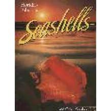Florida's Fabulous Seashells: And Other Seashore Life