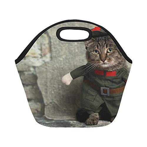 Insulated Neoprene Lunch Bag Cat Animal Costume Cute Pet Domestic Kitten Large Size Reusable Thermal Thick Lunch Tote Bags For Lunch Boxes For Outdoors,work, Office, School