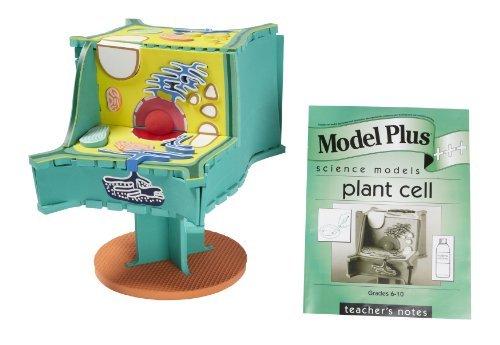 American Educational Model Products Model EVA Plus SI69074 EVA B07N868VJH Foam 3-D Science The Plant Cell Model [並行輸入品] B07N868VJH, フィオーレスポーツ ゴルフ専門店:2358e566 --- 2017.goldenesbrett.net