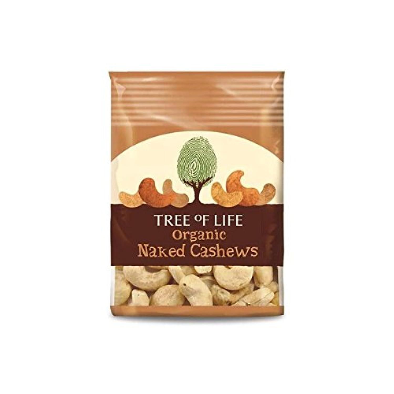 Tree of Life Organic Naked Cashews 40g - Pack of 2
