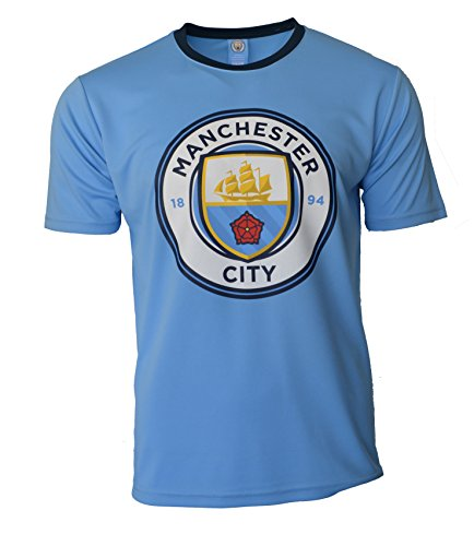 Manchester City Soccer Jersey Adult Training Custom Name and Number (L, NO NAME)