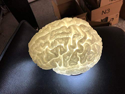 Brain Lamp - rechargeable - water proof - includes remote control- 3D Printed Active Restock requests: 0 ()