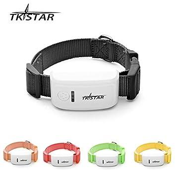 TKSTAR Mini GPS Tracker tk909 para pequeñas mascotas perro gato/personal GPS dispositivo de seguimiento: Amazon.es: Electrónica