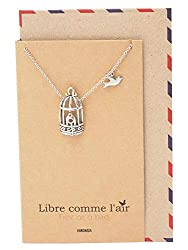 Quan Jewelry Gifts For Women Bird Cage With Key And Bird Charms Necklace Necklaces For Women With Inspirational Greeting Card