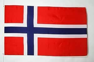 AZ FLAG Bandera de Noruega 90x60cm - Bandera Noruega 60 x 90 cm: Amazon.es: Hogar