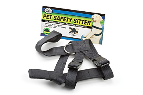 Four Paws Safety Sitter Medium Dog Harness