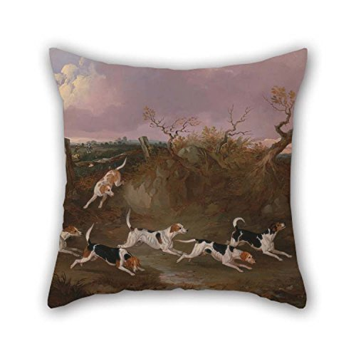 beeyoo Pillow Cases 20 X 20 inches /