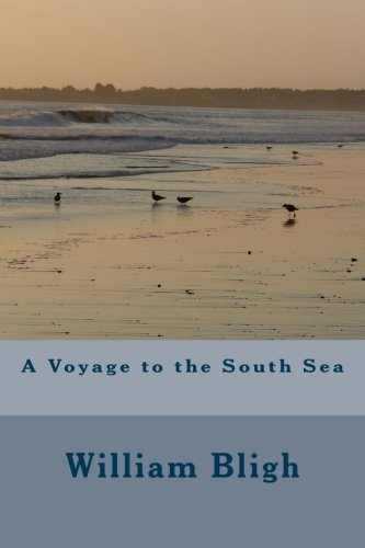 Download A Voyage to the South Sea ebook