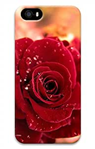 iPhone 5 5S Case Red Rose 2 Funny Lovely Best Cool Customize iPhone 5 Cover