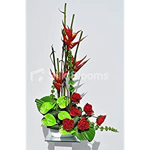 Exotic Red Rose, Fresh Touch Heliconia and Green Anthurium Floral Arrangement 53