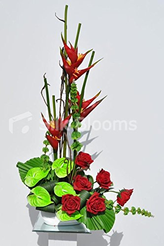 Anthurium Flower Arrangement Photos
