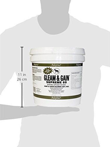 Adeptus Nutrition Gleam and Gain Original 41 EQ Joint Supplements, 10 lb./10 x 10 x 10 by Adeptus Nutrition (Image #1)