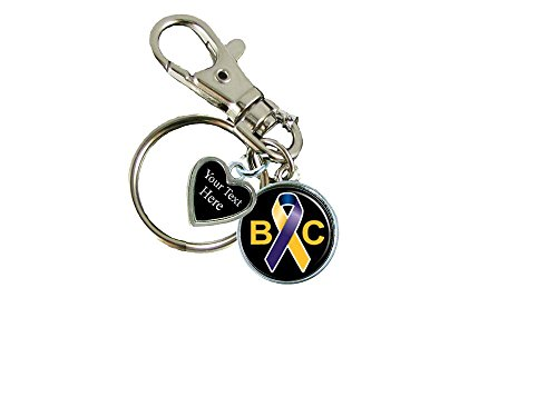Holly Road Bladder Cancer Awareness Ribbon Silver Key Chain Choose Your -