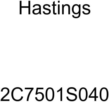 Hastings 2C7501S040 Single Cylinder Piston Ring Set
