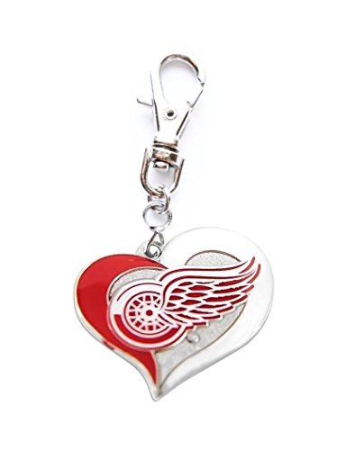 (Heavens Jewelry DETROIT RED WINGS HOCKEY TEAM CHARM ADD TO ZIPPER PULL PET DOG CAT COLLAR LEASH KEYCHAIN ETC)