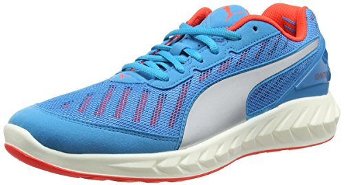 Puma Ignite Ultimate Running Shoes - SS16 - 10 - Blue