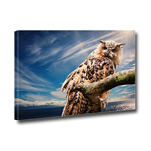 Anna Homey Décor Animal Owls Pictures for Wall décor HD Pictures Canvas Print Wall Art Painting for Office Meeting Room Home Stretched and Framed Artwork,Ready to Hang 12x16 in -