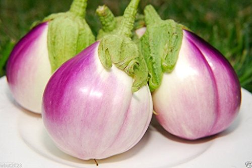 Seeds Rosa Bianca- Organic Non-gmo- Heirloom , Very Productive! (Sicilian Eggplant)
