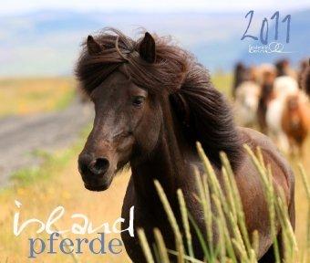 Island Pferde 2011