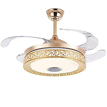 Amazon.com: 42-in Gold Ceiling Fan Light,Bluetooth Music LED ...