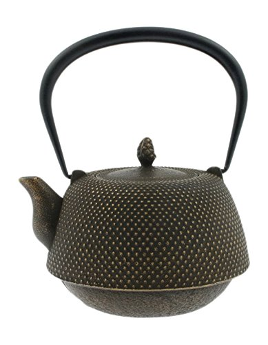 Iwachu Japanese Iron Tetsubin Teapot, Brown by Iwachu