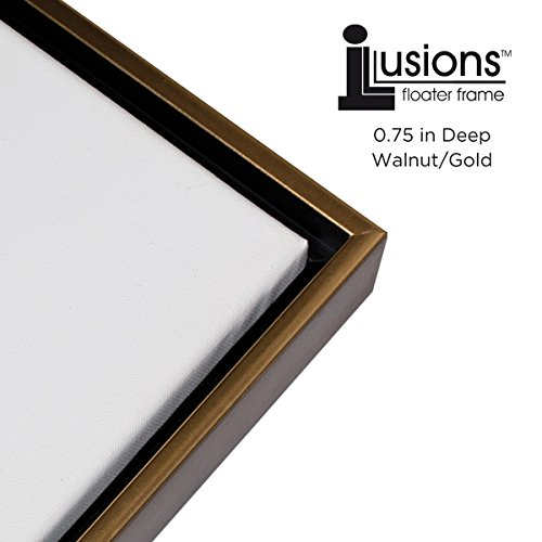 Amazon.com - Illusions Floater Frame for 3/4 Canvas 16x20 - Walnut ...