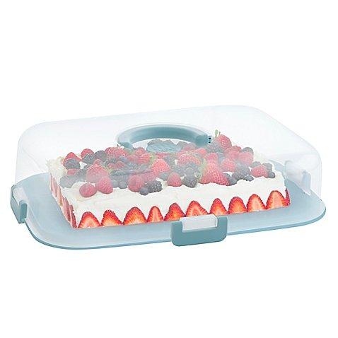 rectangle cake container - 9