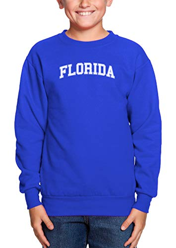 - HAASE UNLIMITED Florida - State Proud Strong Pride Youth Fleece Crewneck Sweater (Royal Blue, Medium)