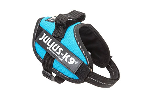 julius-k9-idc-powerharness-size-mini-aquamarine
