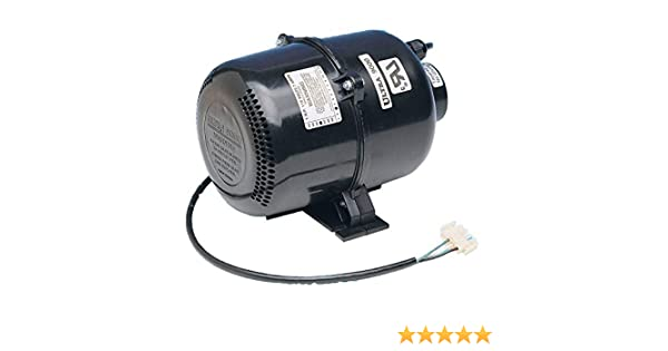 Amazon.com : Air Supply Florida 2 Horsepower Ultra 9000 Portable Spa Blower - 120 Volts : Lawn And Garden Blower Vacs : Garden & Outdoor