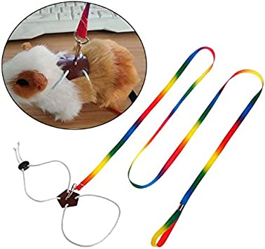 Livedealing Correa para Mascotas, arnés para Mascotas pequeñas, hámster, Conejo, Chinchilla y Ardilla, para Exteriores, Ajustable, Cuerda para el Pecho, Colorida, 1,2 m de Largo, Animal