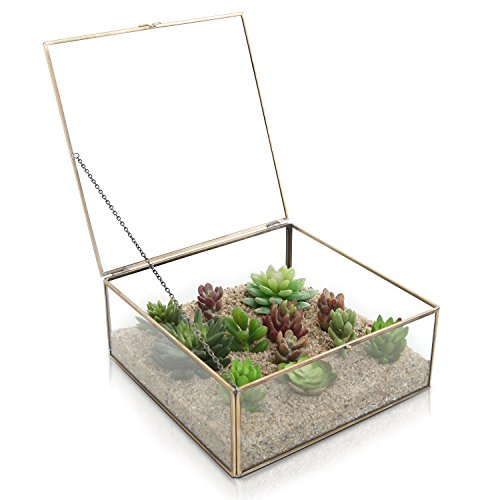 MyGift Vintage Brass & Clear Glass Decorative Box, Plant Terrarium Display, Jewelry Organizer with Latching - Brass Corner Boxes Gift