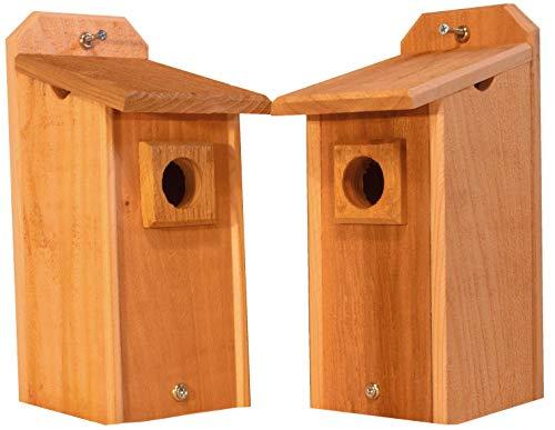 Cheap 2 Cedar Bluebird Houses, Bird House