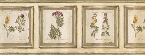 Wallpaper Border - Frame Garden Flowers Prepasted Wall Border Country Garden Wallpaper Border