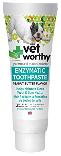 (Vet Worthy Peanut Butter Toothpaste for Dogs (3 oz))
