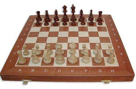 (Wegiel Tournament No. 4 Staunton European Wood Chess Set, 16 Inches)