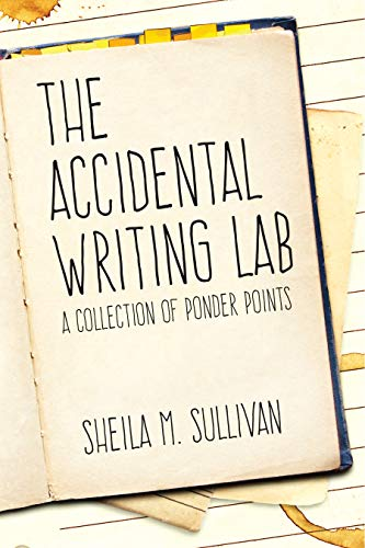 The Accidental Writing Lab by Sheila M Sullivan ebook deal