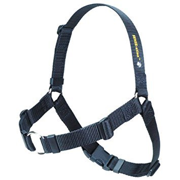 Softouch Concepts The Original SENSE-ation No-Pull Dog Training Harness (Black, Medium-Large Wide)