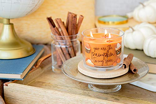 """Aromascape Pumpkin to My Spice, 3-Wick Scented Candle, Orange - Perfect gift idea for a special occasion 11-Ounce 3-wick candle, approximate burn time of 30-40 hours Scented candle with """"You are the Pumpkin to my Spice"""" labeled on the side - living-room-decor, living-room, candles - 41KAM etIFL -"""