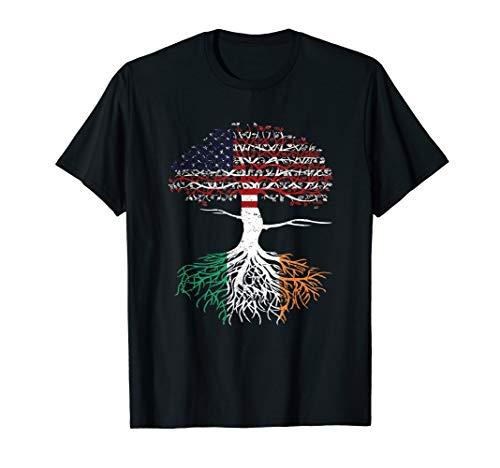 American Heart Irish Roots Patriot USA Ireland Flag Tee