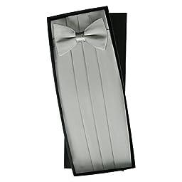 Silver Silk Tie & Cummerbund Set