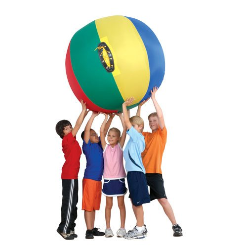 US Games 60 Inch Nylon Complete Cage Ball