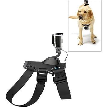 Amazon.com: Original GoPro Fetch (Arnés del perro) espalda y ...